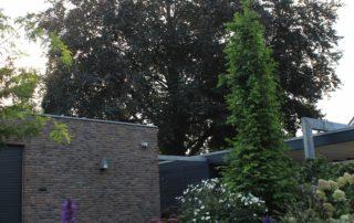 Tuin met veel variatie in Beuningen