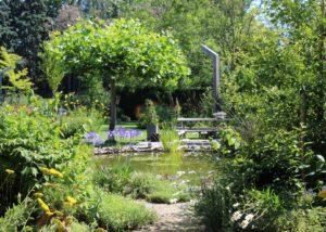 tuin met water