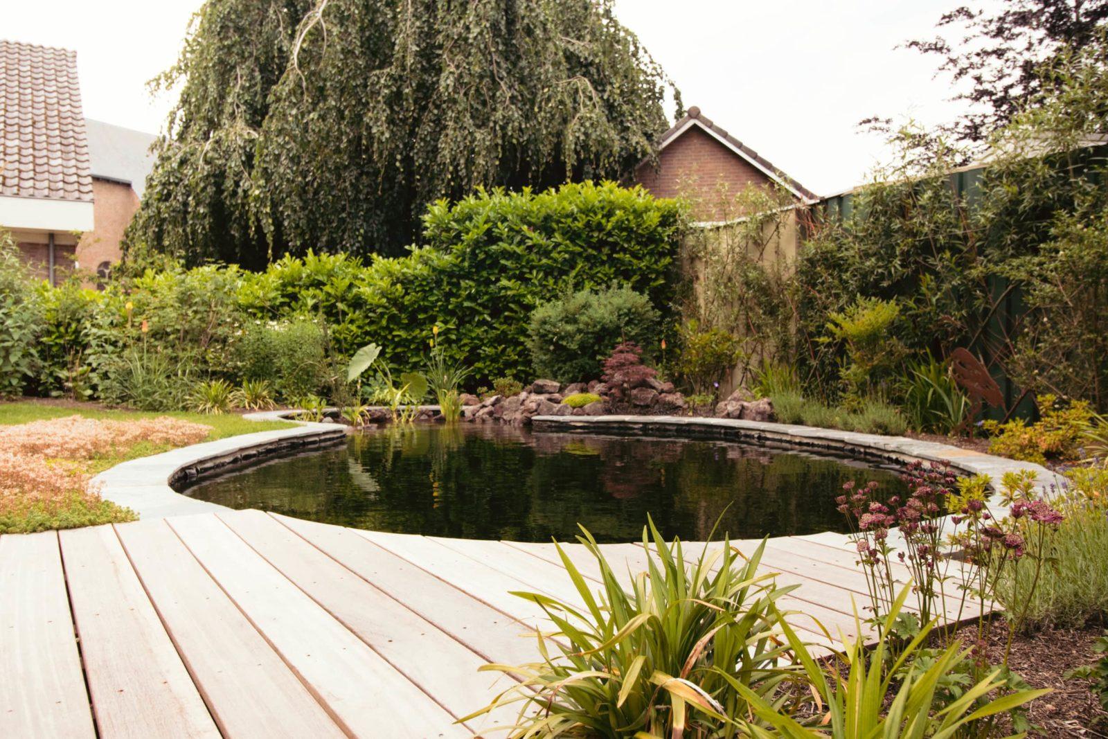 Middelgrote tuin met zwemvijver